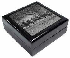 Deer, Stag & Doe Keepsake/Jewel Box Christmas/ Birthday Gift, ADE-7JB