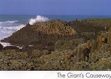 postcard Ireland  Antrim Giant's Causeway  unposted  Insight SP536