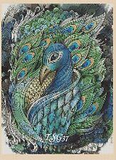 Cross Stitch Chart - Peacock No 374 .TSG37 .
