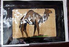 NEW HOLYLAND SOUVENIR PAPYRUS PAPER CAMEL FRAMED STATIONERY CARD & ENVELOPE SET!