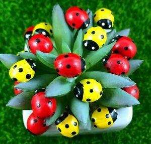 Ladybug Tiny Miniature Dollhouse Fairy Garden Ornaments Accessories Terrarium