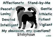 Stabyhoun Dog My Obsession, Any Questions? T-shirt ,Ls, or Sweatshirt choices