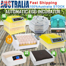 48 Egg Incubator Smart Fully Automatic Digital Turning Chicken Duck Poultry Eggs