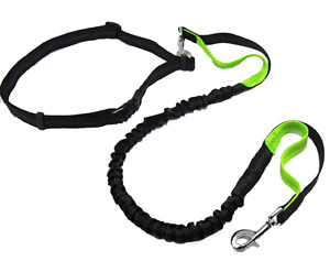 Hands Free  Bungee Dog Leash, Walking, Training, Durable Dual Handle,Reflective