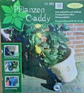 Kübelpflanzen Caddy Pflanzen Caddy Transportkarre für Kübelpflanzen Neuware