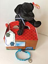 "Adopt-A-Pet Gift Set :4Pc: TY Beanie Baby ""LUKE"":Dog House Box:Bracelet"