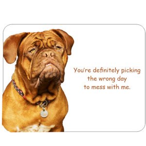 Novelty Sign fun dog humour Dogue De Bordeaux grumpy dog