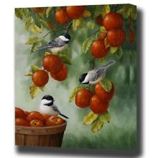"""Paint By Number Kit Apples Fruits Tree Titmouse Birds DIY Picture 16x20"""" Canvas"""
