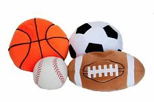 Weighted Sports Balls