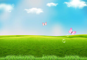10x8ft Blue Sky Cloud Green Grass Land Butterfly Photo Background Vinyl Backdrop