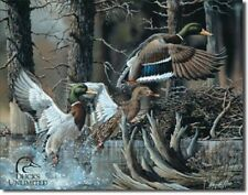 Ducks Unlimited Beaver Pond Hunt Rustic Cabin Wall Art Decor Metal Tin Sign New