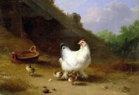 ZWPT581 a big white hen with some chicken hand painted art oil painting canvas