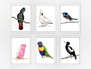 Set of Six Australian Bird Prints - watercolour birds sets of prints