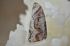 Mexican Crazy Lace Agate Free Form Cabochon 11 grams 51.35 X 24.05 X 6.72MM