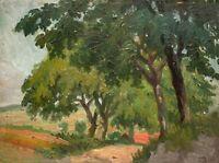 Unbekannter Künstler - Landschaft - Öl auf Pappe - o. J.