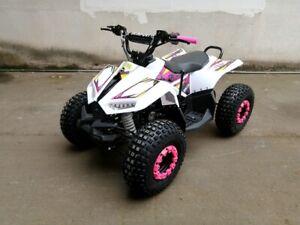 125CC ATV Sport Quad Dirt Bike 4 Wheel Buggy Go kart Semi Auto 1+1 Ranger PINK