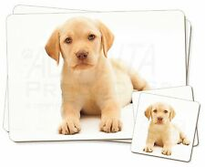 Yellow Labrador Twin 2x Placemats+2x Coasters Set in Gift Box, AD-L4PC