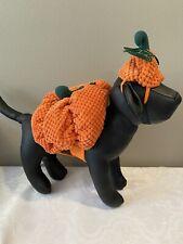 "Bootique Dog Pet Costume Pumpkin Hat XS X-Small New 11-13"" Halloween 2687299"