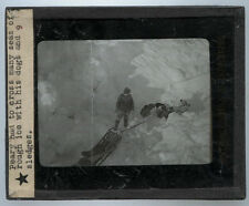 LANTERN SLIDE PHOTO ON GLASS. PEARY EXPEDITION WITH DOG SLEDS.