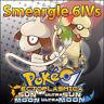 Smeargle 6IV ☀️ Shiny or not 🌙 Battle Ready 6IVs Pokemon Sun Moon Ultra SM USUM