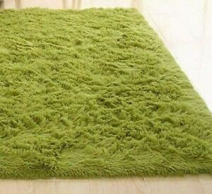 Super Soft Area Rug Modern Soft Shag, Solid Area Rug in Green Apple Brand NEW!