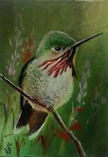 CALLIOPE HUMMINGBIRD Hand Painted Original ACEO Oil Bird Wildlife  Signed by JV