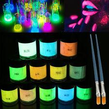 12 Colors DIY Neon Luminous Acrylic Paint Glow in the Dark Pigment Set + 2 Brush