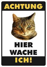 Katze Motiv 2 Funschild Fun Schild Blechpostkarte Blechschild 10,5 x 14,8 cm