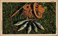 Fishing Catch Pole, Net, Fish, Hat 1950's S-1115 Vintage Postcard AA-002