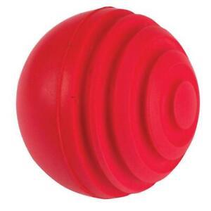 Gray Nicolls Wobble Ball Indoor