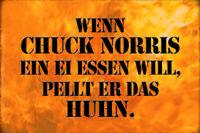 Chuck Norris Dicho 2 Letrero de Metal Arqueado Metal Tin Sign 20 X 30CM