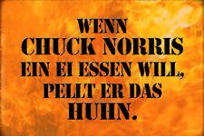 Chuck Norris Spruch 2 Blechschild Schild gewölbt Metal Tin Sign 20 x 30 cm