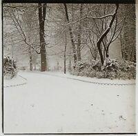 Paesaggio Invernale Giardino Neige c1910 Foto Stereo Placca Da Lente VR12f2