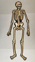 Vintage Beistle Skeleton Glow In The Dark Black Gold 32.5 Inches