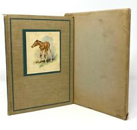 John Steinbeck - The Red Pony - 1st 1st HC w/ Slipcase - Author Grapes of Wrath
