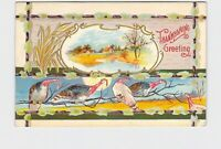 PPC POSTCARD THANKSGIVING GREETINGS TURKEYS ON BRANCH WILLOWS EMBOSSED