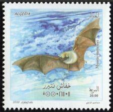 ALGERIA 2020 - FAUNA BAT BATS CHAUVE CHAUVES SOURIS - MNH