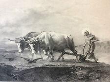 Saint François d'Assise T. Chartran lithographie Fuchs Sté Amis des Arts 1894