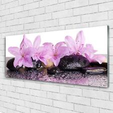Wandbilder Glasbilder Druck auf Glas 125x50 Blumen Steine Pflanzen