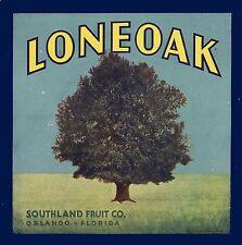 Orlando Florida Loneoak Tree Orange Citrus Fruit Crate Label Print