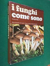 S. VIOLA - I FUNGHI COME SONO Artistiche De Agostini (1976) Libro Grande formato