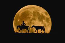 HORSE ART PRINT Full Moon Ride Robert Robert