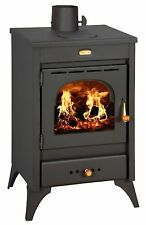 High Efficient Modern Multi Fuel Wood Burning  Stove Fireplace  Prity K1 R