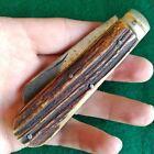 Vintage Antique Sheffield England Bone Stag Sheepsfoot Jack Folding Pocket Knife