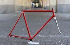Pinarello montello Frame/54cm/2.503g/Campagnolo columbus Super Fork Chrome