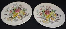 Johnson Bros. England Windsor Ware Garden Bouquet 2 Salad Plates