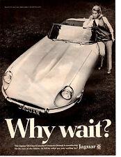 1969 JAGUAR XKE / XK-E   ~  CLASSIC ORIGINAL PRINT AD