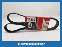 Belt Service V-Ribbed Belt Gates SEAT Arosa 6PK1520 047903137G