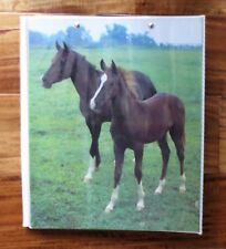 Vintage 1980s Mead DATA CENTER Horse Photos Binder Notebook