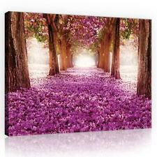 Wandbild  Leinwandbild Kunstdruck 079032FW Lila Blumen Gasse Natur, Wald, Blumen